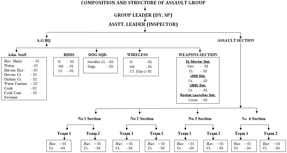 Composition & Structure of Assault Group